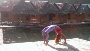 Mich yoga - wheel
